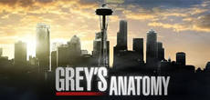 Grey's Anathomy